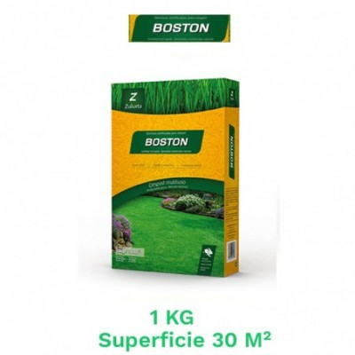 Caja 1 kg semillas cesped boston